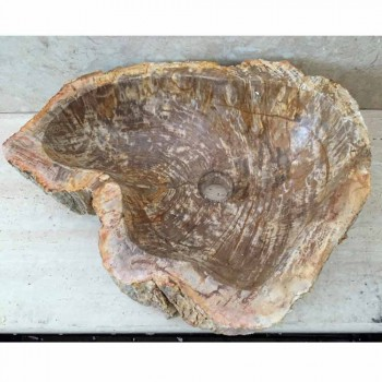 Design Waschbecken aus fossilem Holz Star Mini, Einzelstück
