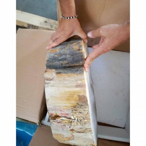 Waschbecken aus Holz Fossil Zähler Goa Einzelstück